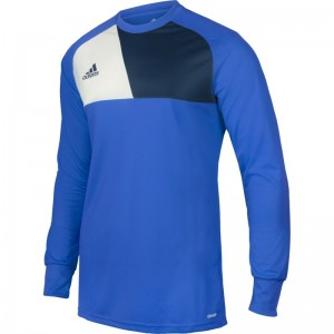 Bluza bramkarska ADIDAS Assita Junior